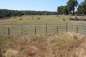 Investimentos complementares em exploração pecuária